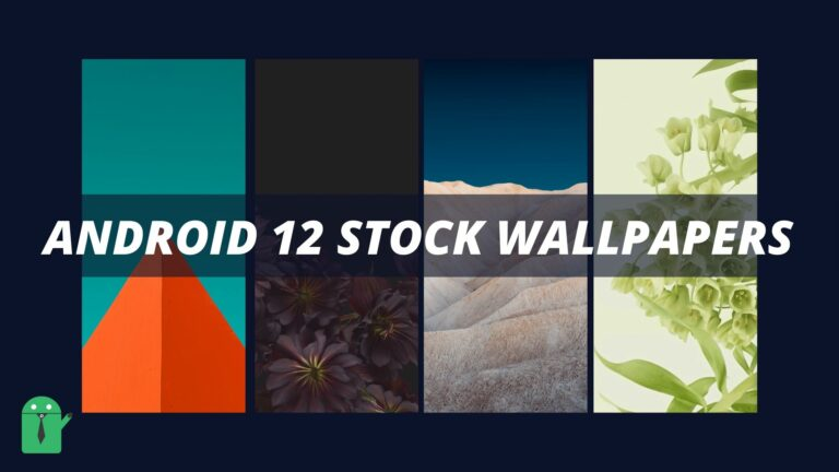Android 12 Stock Wallpaper Download for Free