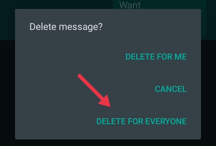 DELETE WHATSAPP MESSAGE AFTER TIME LIMIT