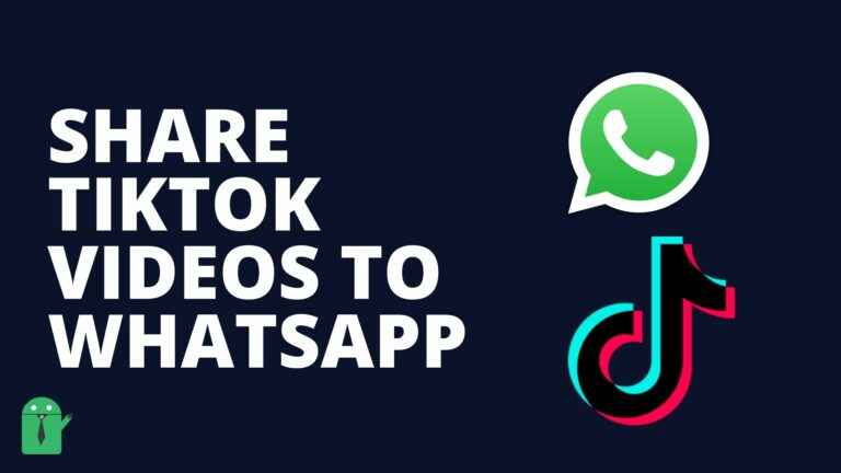 How to Share TikTok Videos on WhatsApp in 2021
